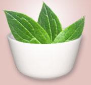 La grasa de lubricación para el tratamiento de la psoriasis comprar